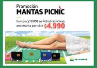 promo mantas picnic